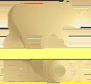 distributeur des produits Rinox