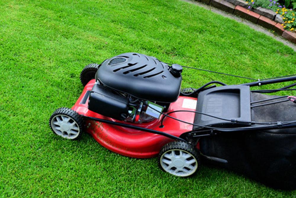 entretien du pelouse